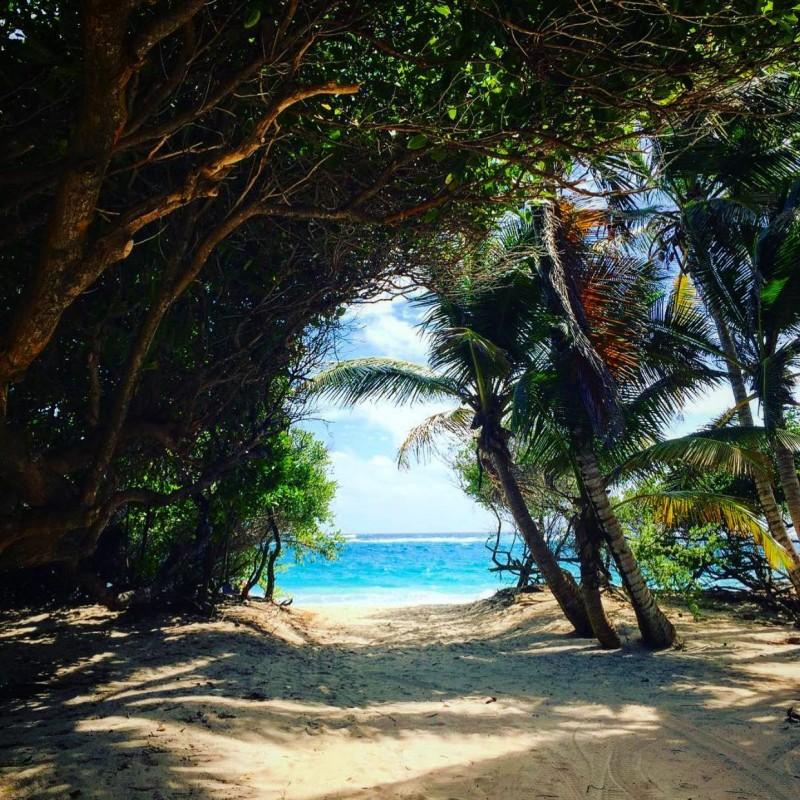 Mustique Macaroni Beach